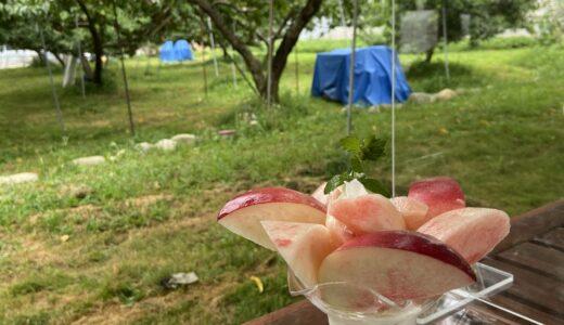 【中西農園 ピーチカフェなかにし】桃パフェを求めて山梨県笛吹市へ